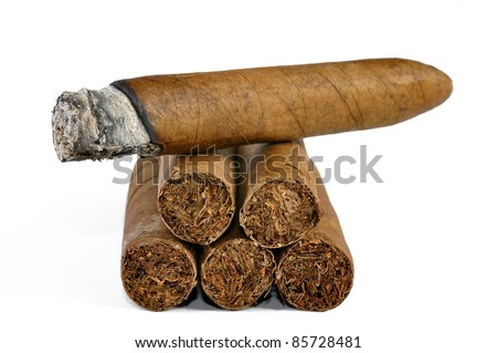brown cigar burned on white background - stock photo