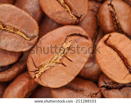 Brown coffee beans extreme macro closeup background, selective focus - stock photo