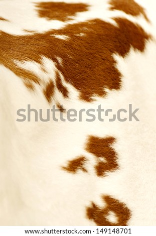 Brown cow fur background - stock photo