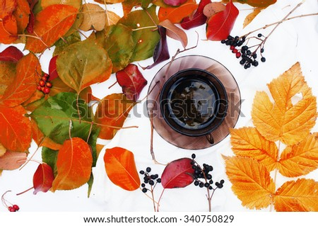 Brown cup with fresh green tea. Cup of tea on a white background,  top view,many  colourful autumn leaves, cup of tea surrounded by autumn leaves. Autumn background. Yellow  leaves. Herbal tea. - stock photo