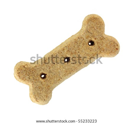 Brown dog biscuit - stock photo
