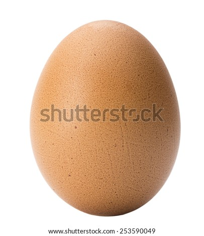 Brown Egg - stock photo
