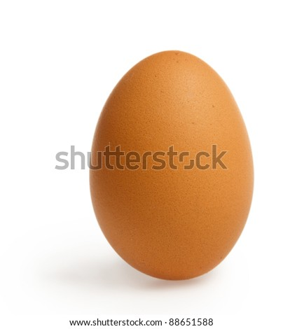 Brown egg stands upright isolated on white background with shadow. Image have clipping path. - stock photo