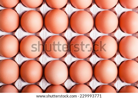 brown eggs arranged in a tray top view - stock photo