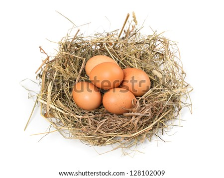 Brown eggs in a nest isolated on a white background - stock photo