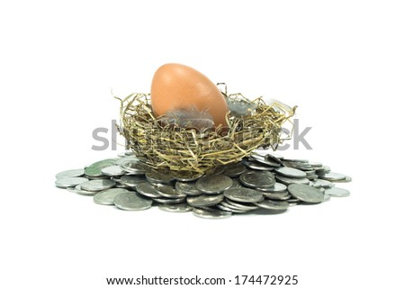 brown eggs in a nest on coins white background