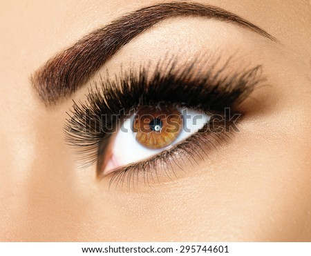 Brown Eye Makeup. Eyes Make-up. Beautiful Eyes Make up detail, perfect beauty eyebrows - stock photo