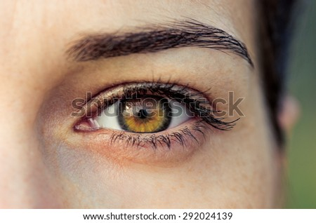 Brown eye of young woman - stock photo