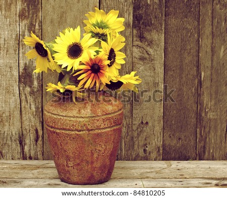 Brown eyed Susan flowers in a rustic vase on a grunge wood backdrop with copy space. - stock photo