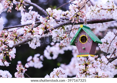 Brown, green and yellow birdhouse hanging from spring flowering tree branch; white blossoms blurred in background - stock photo
