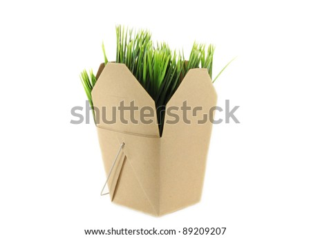 Brown grocery box with grass inside over white background symbolizing green shopping or natural groceries - stock photo