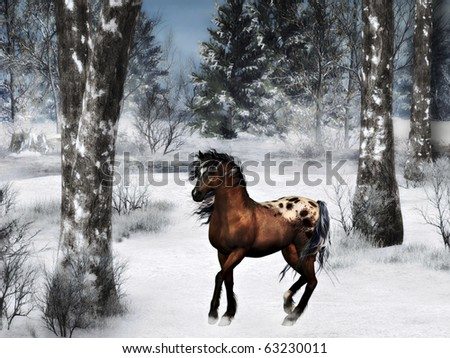 Brown horse on a windy winter day - stock photo