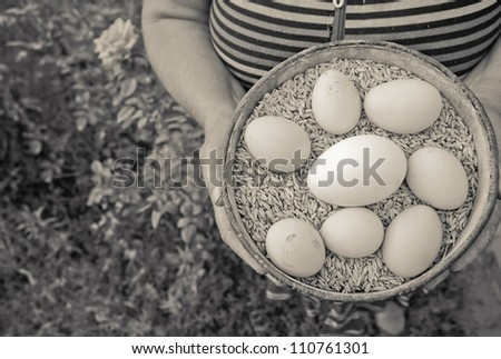 Brown image of a plate full of grain - oats, which is laid on top of chicken and goose eggs. The plate is in woman�¢??s hands.