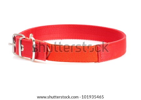 brown leather collar isolated over white background - stock photo