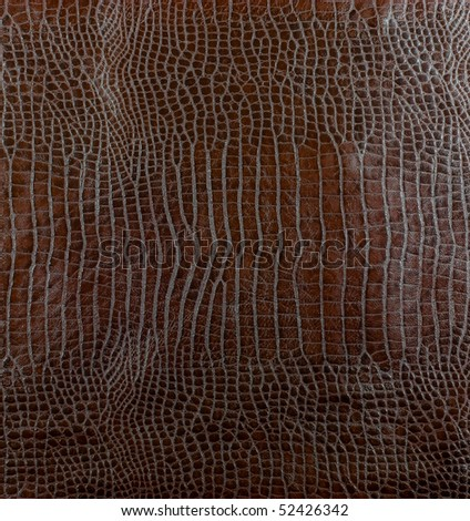brown leather crocodile texture for background - stock photo