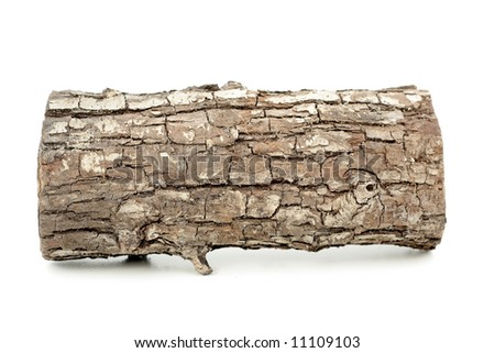 brown log, on white - stock photo
