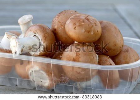 Brown mushrooms in a plastic box close-up