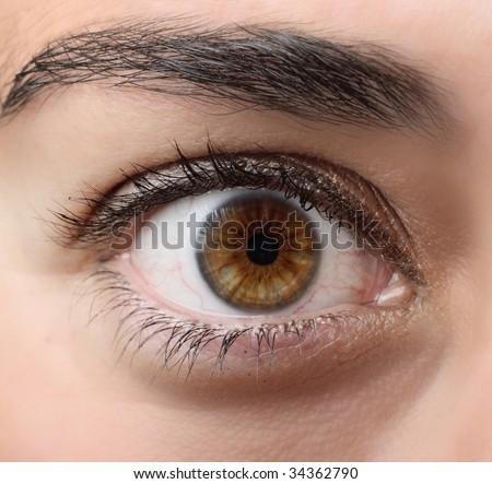 Brown open eye - stock photo