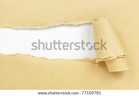 brown paper with copy space for text - stock photo