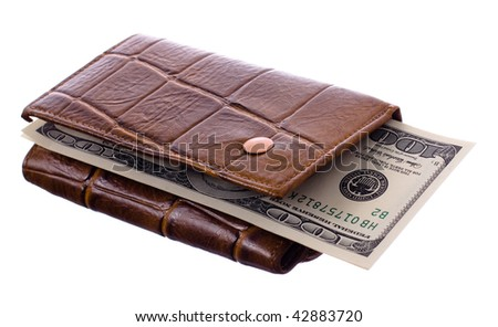 Brown purse with dollars isolated on a white