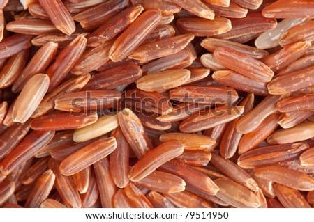 brown rice background closeup - stock photo