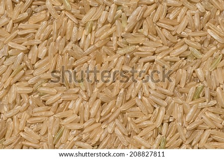 Brown Rice for healthy - stock photo