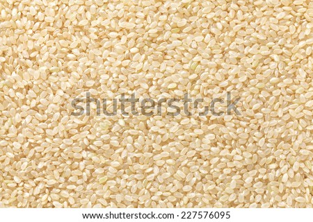 brown rice , genmai - stock photo