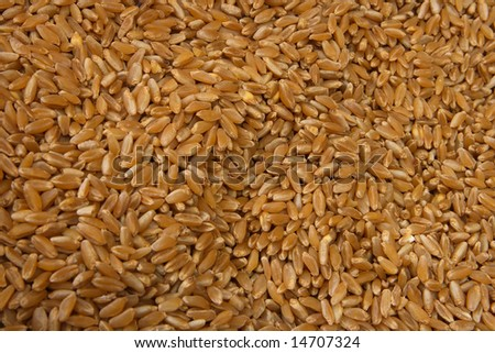 Brown rice in the market