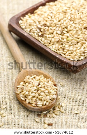brown rice in wooden spoon and bowl - stock photo