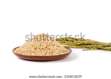 brown rice on wooden plate and paddy on white background - stock photo