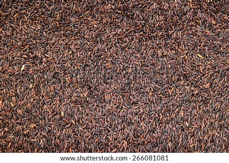 Brown rice or Rice berry close-up texture - stock photo
