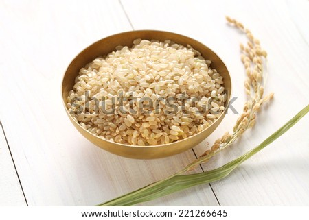 brown rice with ear of rice, japanese healthy food - stock photo