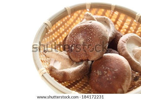 Brown round mushrooms on a bamboo plate. White background. - stock photo
