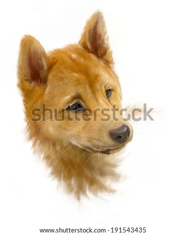 brown shiba inu, puppy portrait on white, painted, rough brushstroke painterly look - stock photo
