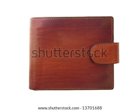 Brown shiny wallet on white background - stock photo