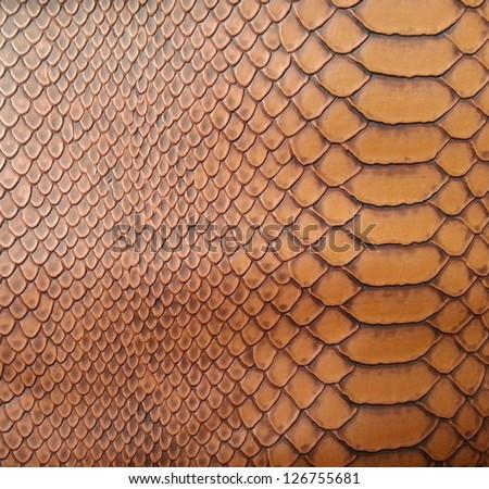 Brown snake skin texture - stock photo