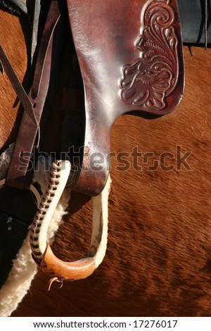 Brown Stirrup Close Up - stock photo
