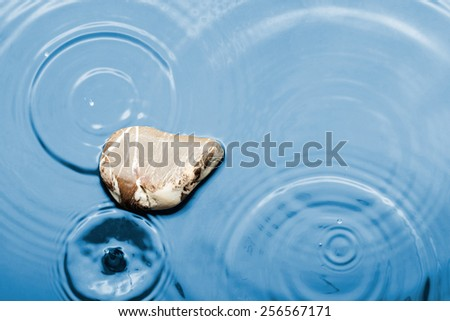 Brown striped stone in the water under the rain, can use, as background - stock photo