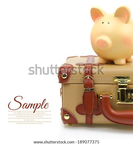 Brown suitcase with piggy bank and copy-space - stock photo