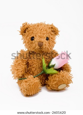 brown teddy bear sitting with a pink rose