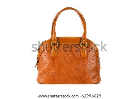 brown women bag, fashion of 2011 year isolated on white background