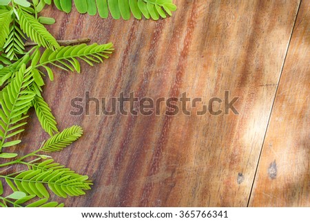 Brown Wood Texture with tamarind leaves use for background - stock photo