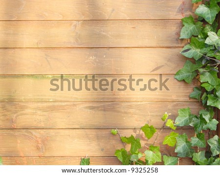 brown wooden wall pattern with green plant - stock photo