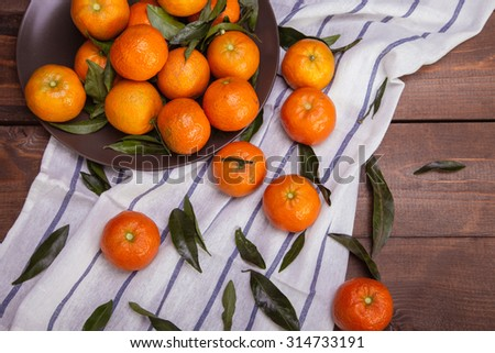 brunch of tangerines - stock photo