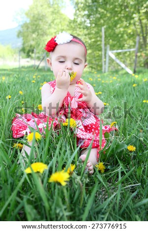 Brunette baby girl sitting outside in the field - stock photo