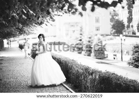 Brunette bride - stock photo