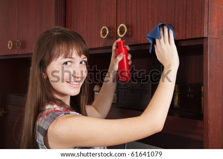 Brunette young girl cleans a furniture indoor - stock photo
