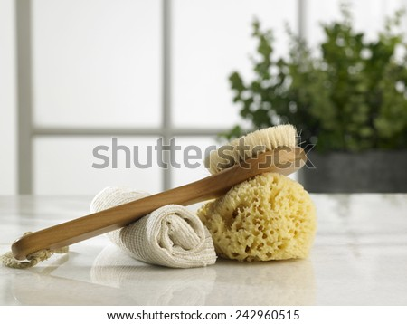 brush ,sponge and rolled up hand towel - stock photo