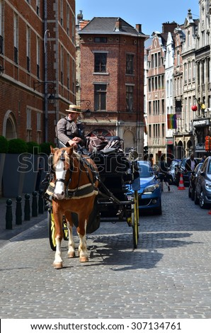 Brussels, Belgium - May 12, 2015: Driver in traditional horse carriage around the city of Brussels. Brussels is the capital and largest city of Belgium.
