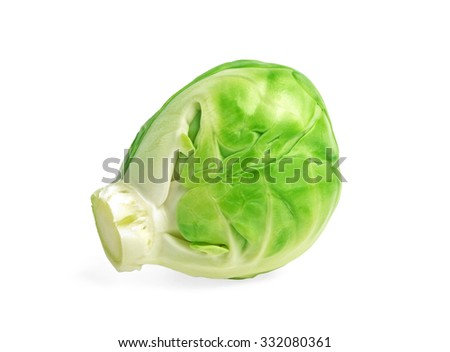 Brussels sprout isolated on white background - stock photo